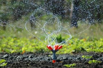 Nawadnianie Ogrodu / Trawnika